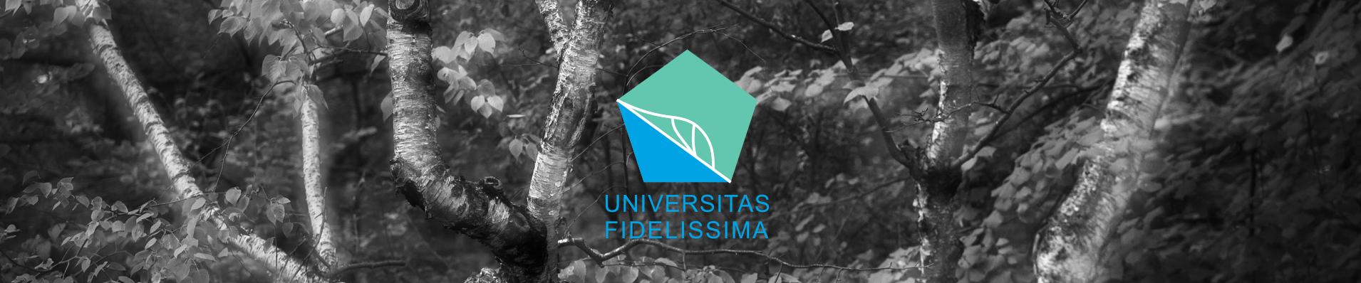 UNIVERSITAS FIDELISSIMA KFT.